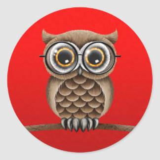 Cute Fluffy Brown Owl with Reading Glasses, Red Classic Round Sticker