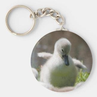 Cute fluffy cygnet baby swan keychain, present basic round button key ring