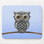 Cute Fluffy Grey Owl with Glasses, Light Blue