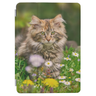 Cute Fluffy Maine Coon Kitten Cat in Flowers Photo iPad Air Cover