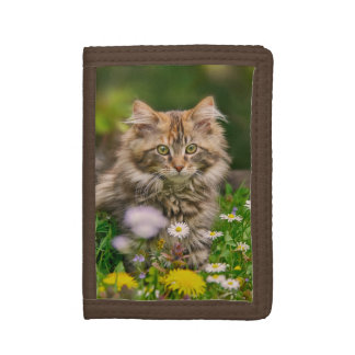 Cute Fluffy Maine Coon Kitten Cat in Flowers Photo Tri-fold Wallet