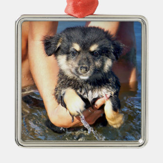 Cute Fluffy Puppy Dog Photograph Christmas Ornament
