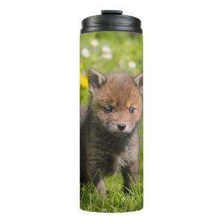 Cute Fluffy Red Fox Cub Wild Baby Animal Photo - Thermal Tumbler