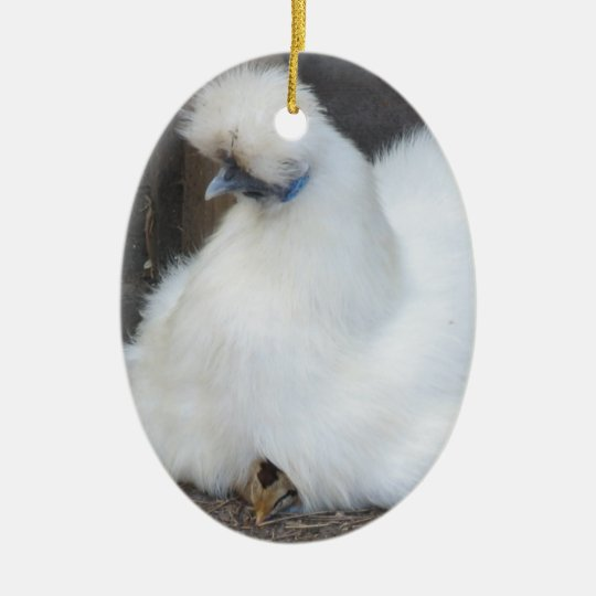 Cute Fluffy White Chicken and Chick ornament