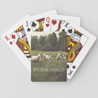 Cute Fluffy White Sheep & lambs in pasture photo Poker Deck