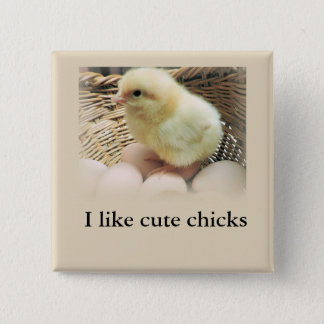 Cute Fluffy Yellow Baby Chicken in Basket of Eggs 15 Cm Square Badge