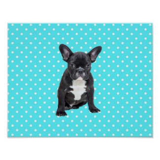 Cute French Bulldog Blue Polka Dots Poster