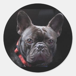 Cute French Bulldog Classic Round Sticker