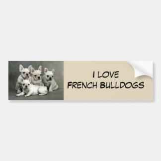 Cute French Bulldog Puppies Bumper Sticker