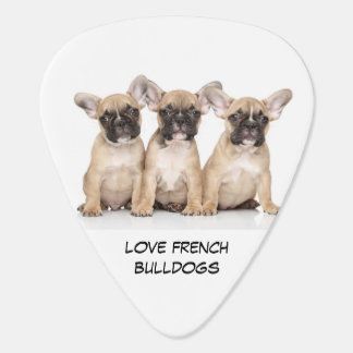 Cute French Bulldog Puppies Plectrum
