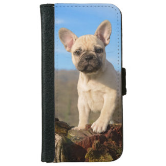 Cute French Bulldog puppy iPhone 6 Wallet Case