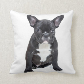 Cute French Bulldog Puppy Pillow
