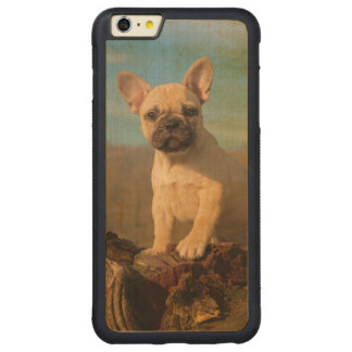 Cute French Bulldog puppy, vintage Carved Maple iPhone 6 Plus Bumper Case