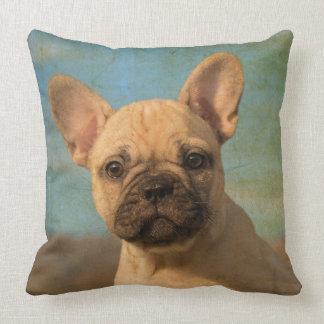 Cute French Bulldog puppy, vintage Cushion