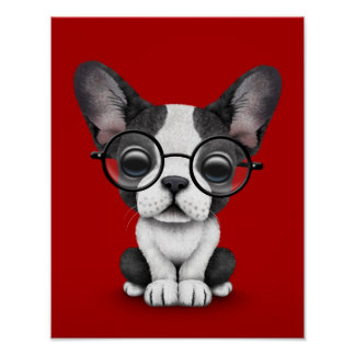 Cute French Bulldog Puppy with Glasses, red Poster