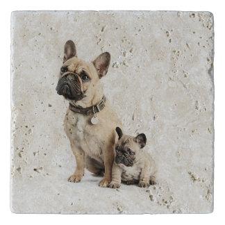 Cute French Bulldogs Trivet