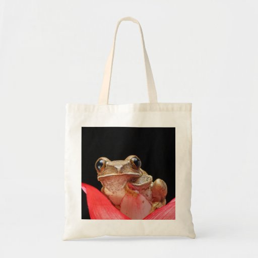 Cute Frog in a Pink Lily Close Up Bag