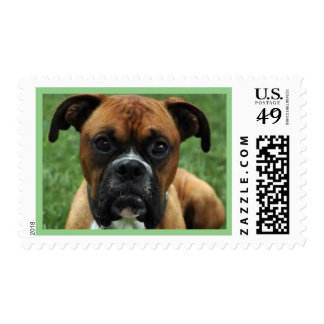 Cute Funny Boxer Postage Stamp
