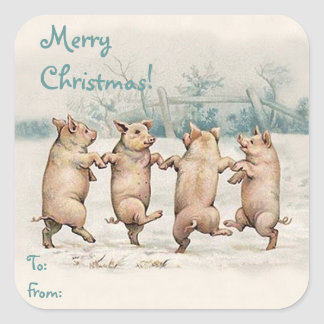"Cute Funny Dancing Pigs ""Merry Christmas"" Package Square Sticker"