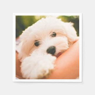 Cute & Funny Dog paper napkins