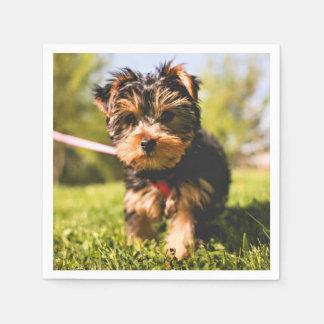 Cute & Funny Dog paper napkins Disposable Napkin