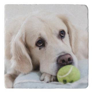 Cute & Funny Dog trivet 10
