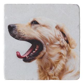 Cute & Funny Dog trivet 6