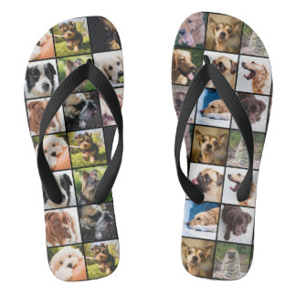 Cute & Funny Dogs sandals
