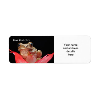 Cute, Funny Frog in Lily RAL Template Return Address Label