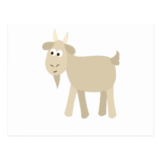 Cute Funny Little Goat Postcard