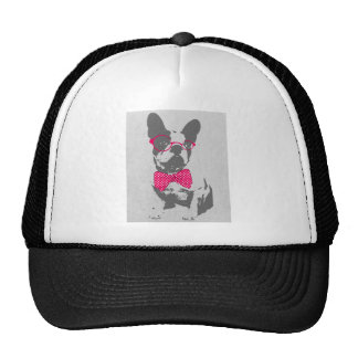 Cute funny trendy vintage animal French bulldog Hats
