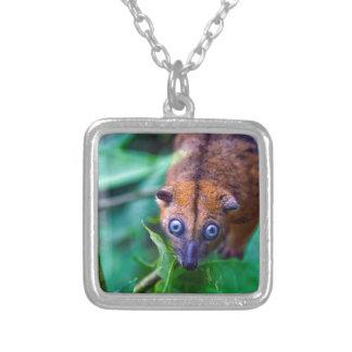 Cute furry cuscus possum looking at camera custom jewelry