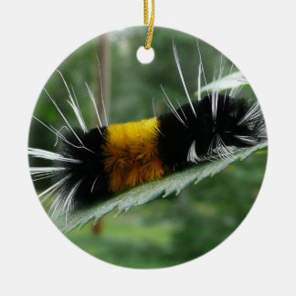 Cute Fuzzy Caterpillar Round Ceramic Decoration