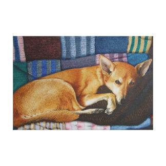 cute german shephard dog cross pet portrait art stretched canvas prints
