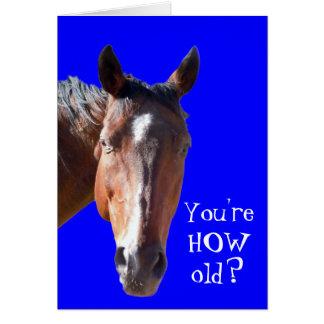 Cute Getting Older Birthday Horse Western Greeting Card