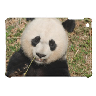 Cute Giant Panda Bear iPad Mini Cases
