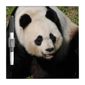 Cute Giant Panda Dry Erase Board