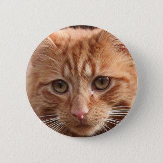 Cute ginger cat 6 cm round badge