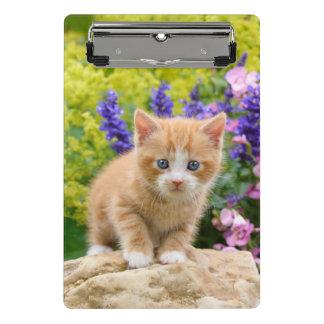 Cute Ginger Cat Kitten Flowery Garden Portrait on Mini Clipboard