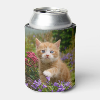 Cute Ginger Cat Kitten in a Garden, Funny Bawdle Can Cooler