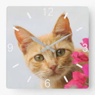 Cute Ginger Cat Kitten Watching Photo - dial-plate Clock