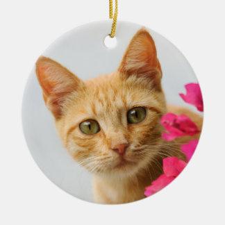 Cute Ginger Cat Kitten Watching Photo - hang Decor Christmas Ornament