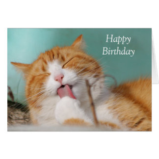 Cute ginger cat licking paw custom birthday card