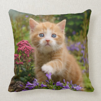 Cute ginger kitten in a garden cushion