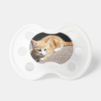 Cute Ginger Kitten Pacifiers