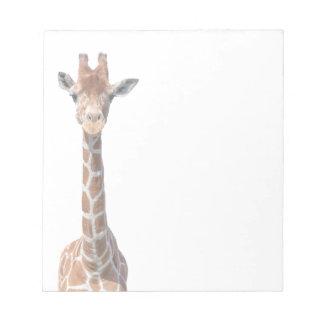Cute giraffe face notepad