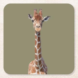 Cute giraffe face square paper coaster