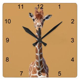Cute giraffe face square wall clock