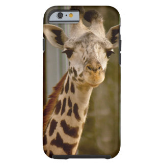 Cute Giraffe iPhone 6 case