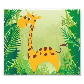 Cute Giraffe Photograph